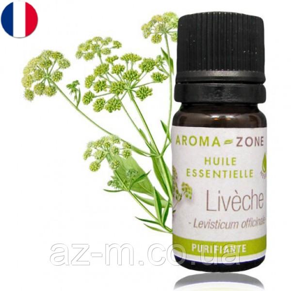 Любисток (Levisticum officinale) эфирное масло