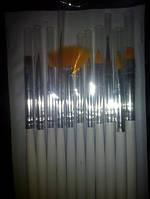 Набор кистей для рисования и китайской росписи 11 шт. + дотс + веер