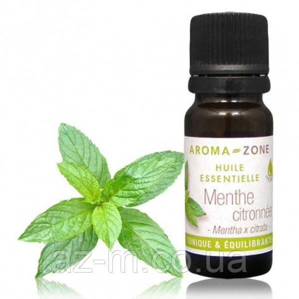 Мята бергамотная (Mentha citrata) эфирное масло