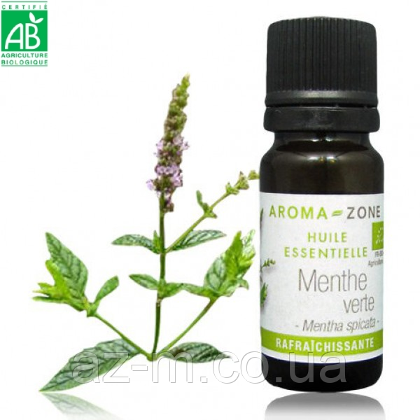 Мята колосистая (Mentha spicata) BIO эфирное масло
