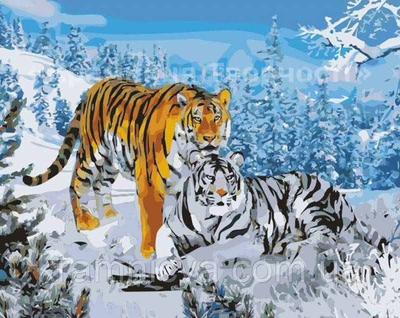 "Картина по номерам без упаковки ""Два тигра"", 40х50см. (КНО194), фото 1"