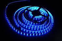 LED лента синяя 5050 B, герметичная светодиодная лента, лед лента светодиодная IP65 smd 5050