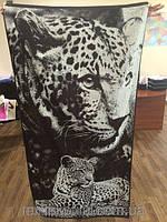 Полотенце махровое ТМ Речицкий текстиль, Инстинкт, 67х150 см