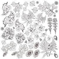 """Лист для для раскрашивания маркерами """"Botany summer"""" (30,5x30,5)"""