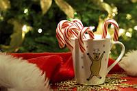 Подарки к Новому году каждому покупателю!