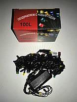 Гирлянда электрическая 100 л (9 режимов, контроллер), фото 2