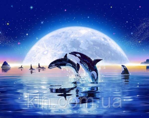 Алмазная вышивка Дельфины 37 х 30 см (арт. FS320) , фото 1