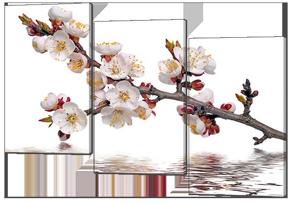Модульная картина Цветущая ветка отражение 124* 86 см Код: w6863