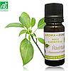 Равинтсара (Cinnamomum camphora) BIO эфирное масло