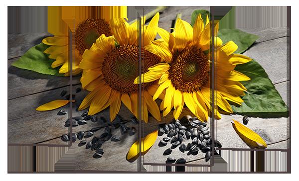 Модульная картина Подсолнухи 126* 76,5 см Код: w6879