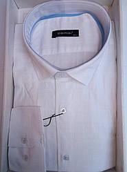 Мужская рубашка приталенная батал DERGI длинный рукав