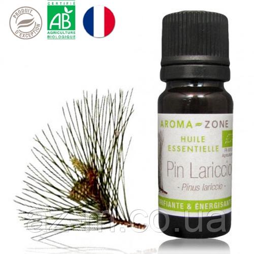 Сосна корсиканская (Pinus lariccio) BIO эфирное масло, 10 мл