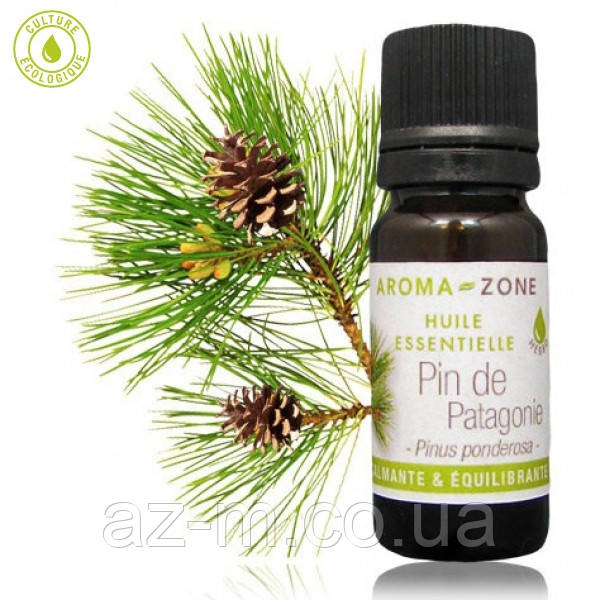 Сосная жёлтая (Pinus ponderosa) эфирное масло, 5 мл