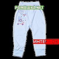 Штанишки на широкой резинке р. 80 демисезонные ткань ИНТЕРЛОК 100% хлопок ТМ Алекс 3297 Голубой