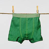 Детские боксерки для мальчика р.98 зеленый