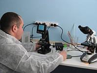 Підходи до організації лабораторії по штучному осіменінню свиней