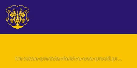 Флаг Ужгорода