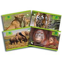 Альбом 12 листов Kite Animal Planet 241, на скобе, ламинация