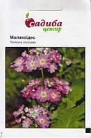 Насіння квітів Примула Малакоідес, лососева 0,01 г