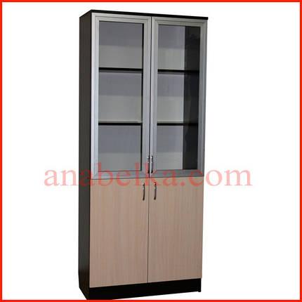 Шкаф с распашными комбинированными  дверями  ОН - 11/1 (Ника), фото 2