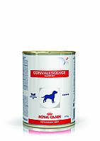 Royal Canin CONVALESCENCE SUPPORT 410г консервы - лечебный корм для собак в период выздоровления