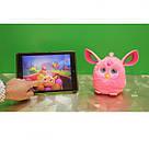 Furby Connect Англоязычный Ферби Коннект розовый Hasbro, фото 3
