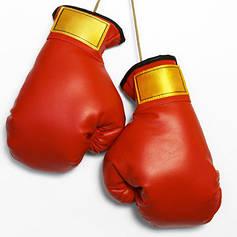 """Боксёрские перчатки """"PowerPlay"""""""