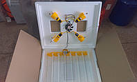 Инкубатор Теплуша с автоматическим переворотом яиц с вентилятором  и цифровым терморегулятором на 63 яйца