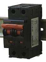 Выключатель автоматический BB1-63 2P 20 600V DC (20А / 600В постоянного тока, 2-х полюсный, неполярный)