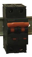 Выключатель автоматический BB1-63 2P 32 600V DC (32А / 600В постоянного тока, 2-х полюсный, неполярный)