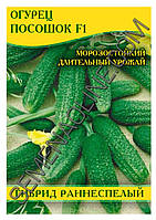 Семена огурца Посошок F1, 100 г , фото 1