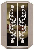 Угловой шкаф-купе рисунок пескоструй на тонированном зеркале 2 двери ТМ Матролюкс