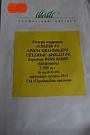 Сельдерей корневой  сорт Аполло  2500 шт