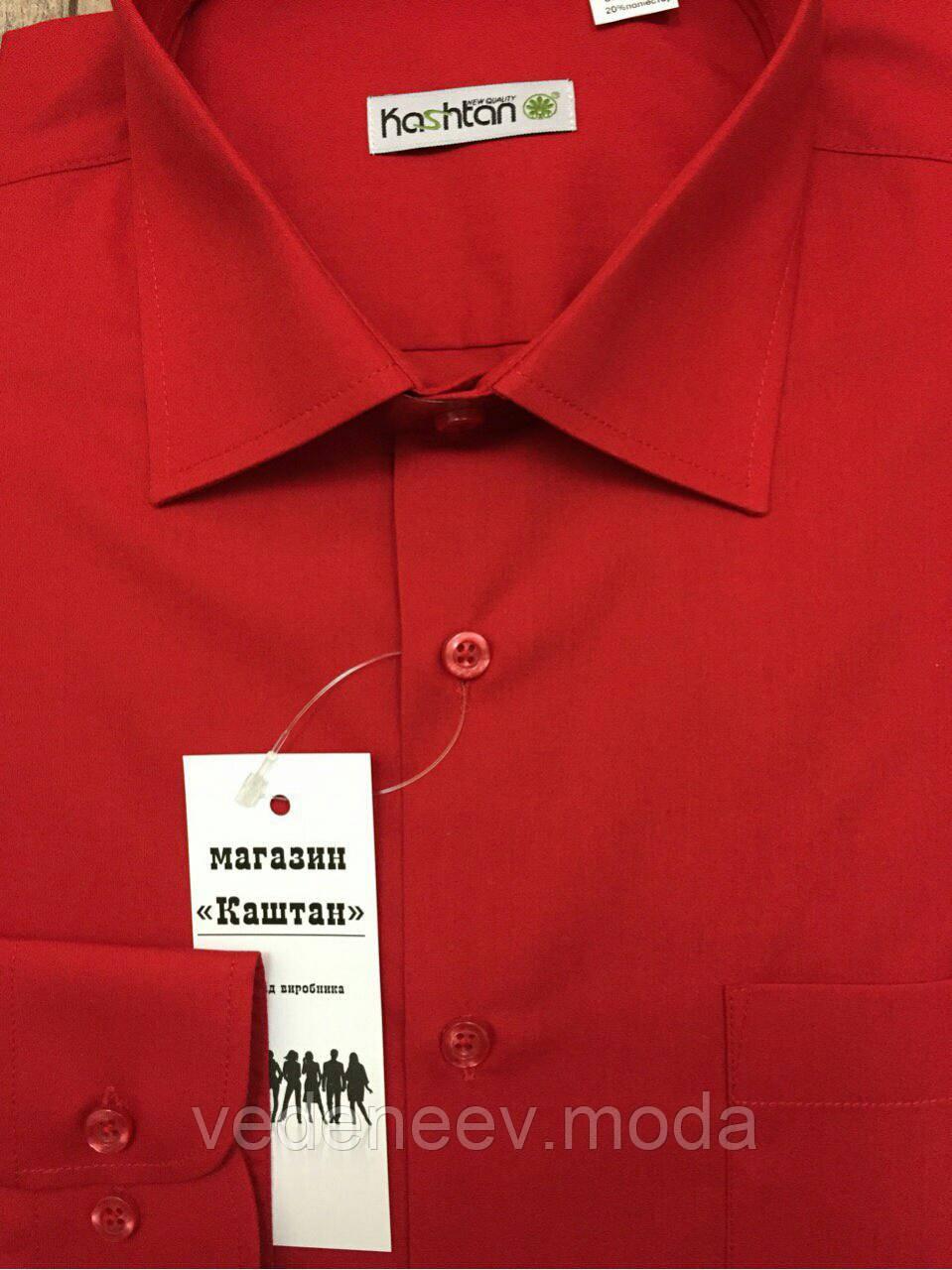 Мужская рубашка яркая вишня
