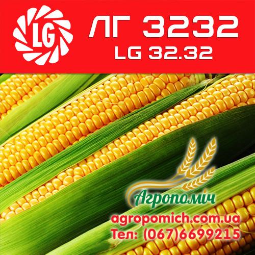 Кукуруза ЛГ 3232 (LG 32.32)