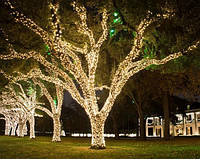 """Светодиодная гирлянда уличная (нить) """"String Light"""" 20 метров, 200 led для создания декораций"""