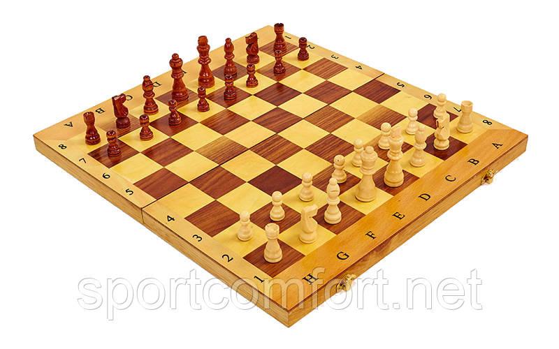 Шахматы, шашки, нарды 3 в 1 деревянные 45 х 45 см
