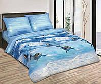 Комплект постельного белья из поплина Дельфины