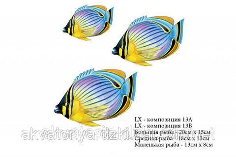 Тропические рыбы. Композиция из 3 рыб