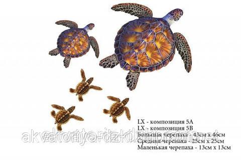 Композиция Черепахи, 5 шт., цвет - коричневый