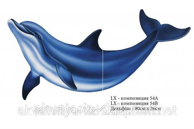 Наклейка Дельфін. Аплікація 80 см