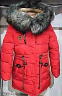 Зимнее пальто   на девочку  146,152 р  Кузя,цвет красный,холлофайбер  арт 66-286.