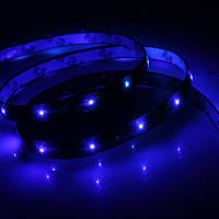 Светодиодная лента Star Light  12V Blue, синяя диодная лента, фото 1