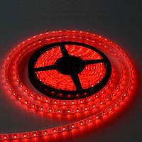 Светодиодная лента LED 3528 Green Red Blue White 60RW (цвета в ассортименте), фото 1