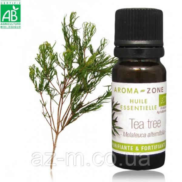 Чайное дерево (Tea tree) BIO эфирное масло