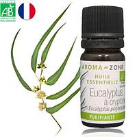 Эвкалипт криптоновый (Eucalyptus polybractea) BIO эфирное масло, 5 мл