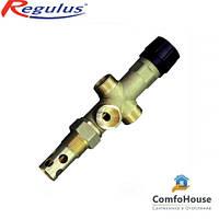 """Regulus DBV1 – 02 3/4"""" двухходовой защитный клапан"""