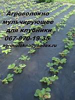 Агроволокно Premium-Agro 50 г/м² черное (1,05*100м) Польша, от сорняков, мульчирующее для клубники