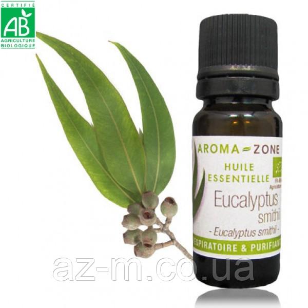 Эвкалипт Смита (Eucalyptus smithii) BIO эфирное масло