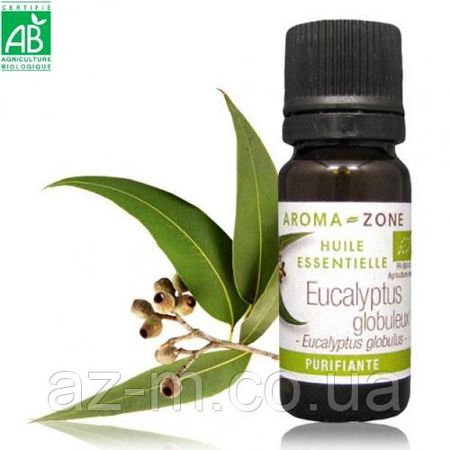 Эвкалипт шаровидный (Eucalyptus globulus) BIO эфирное масло